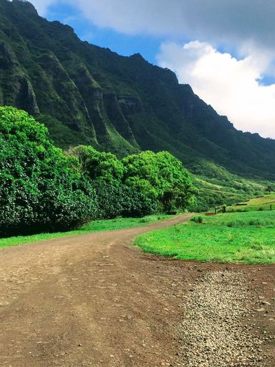 Country Road No People Cloud - Sky Outdoors Green Color Scenics Blue Grass Oahu Hawaii Tropical Landscape Nature Tropics Mountains The Week On EyeEm Island Of Oahu, Hawaii Been There. Lost In The Landscape Second Acts Perspectives On Nature Oahu / Hawaii An Eye For Travel