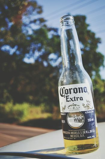 Beer Time BestBeerAroundTheWorld Corona Beer Dom'sfavorite Goa Beautifulweather Memories Vacations BestPlaceToBe
