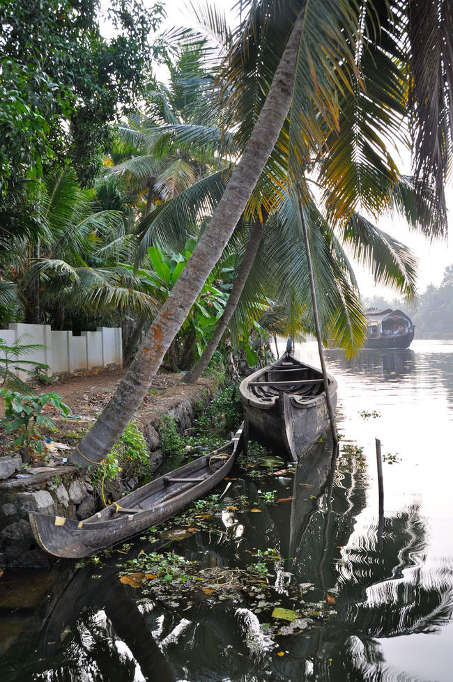 Back Waters Boat India Kerala River Tranquility