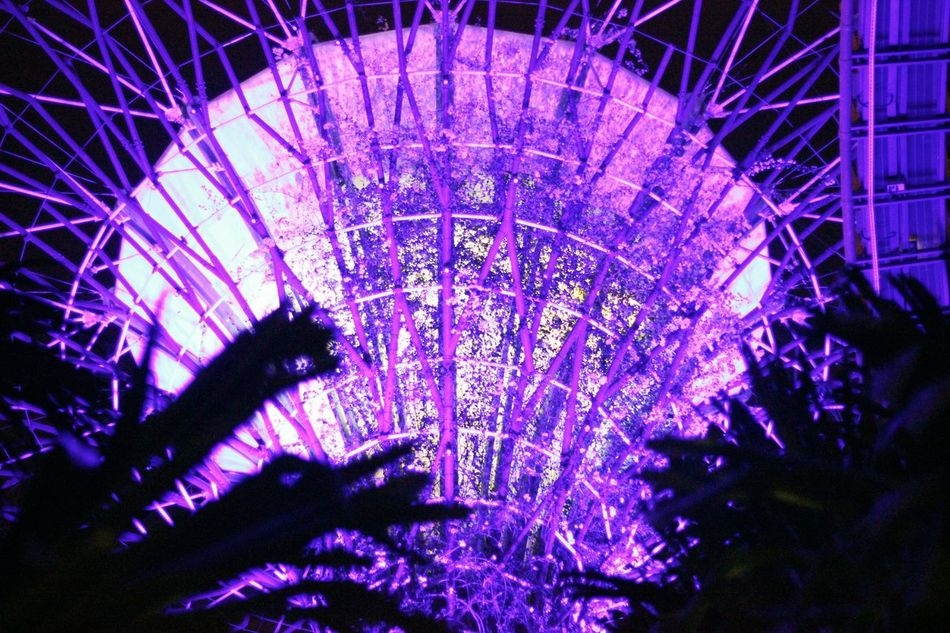 Gardens by the Bay, Singapore. #creative #EyeEmNewHere #EyeemPhilippines #gardensbythebay #photography #photo #photos #pic #pics #TagsForLikes #picture #pictures #snapshot #art #beautiful #instagood #picoftheday #photooftheday #color #all_shots #exposure #composition #focus #capture #moment #Singapore Illuminated Leisure Activity Night No People Outdoors Sky First Eyeem Photo