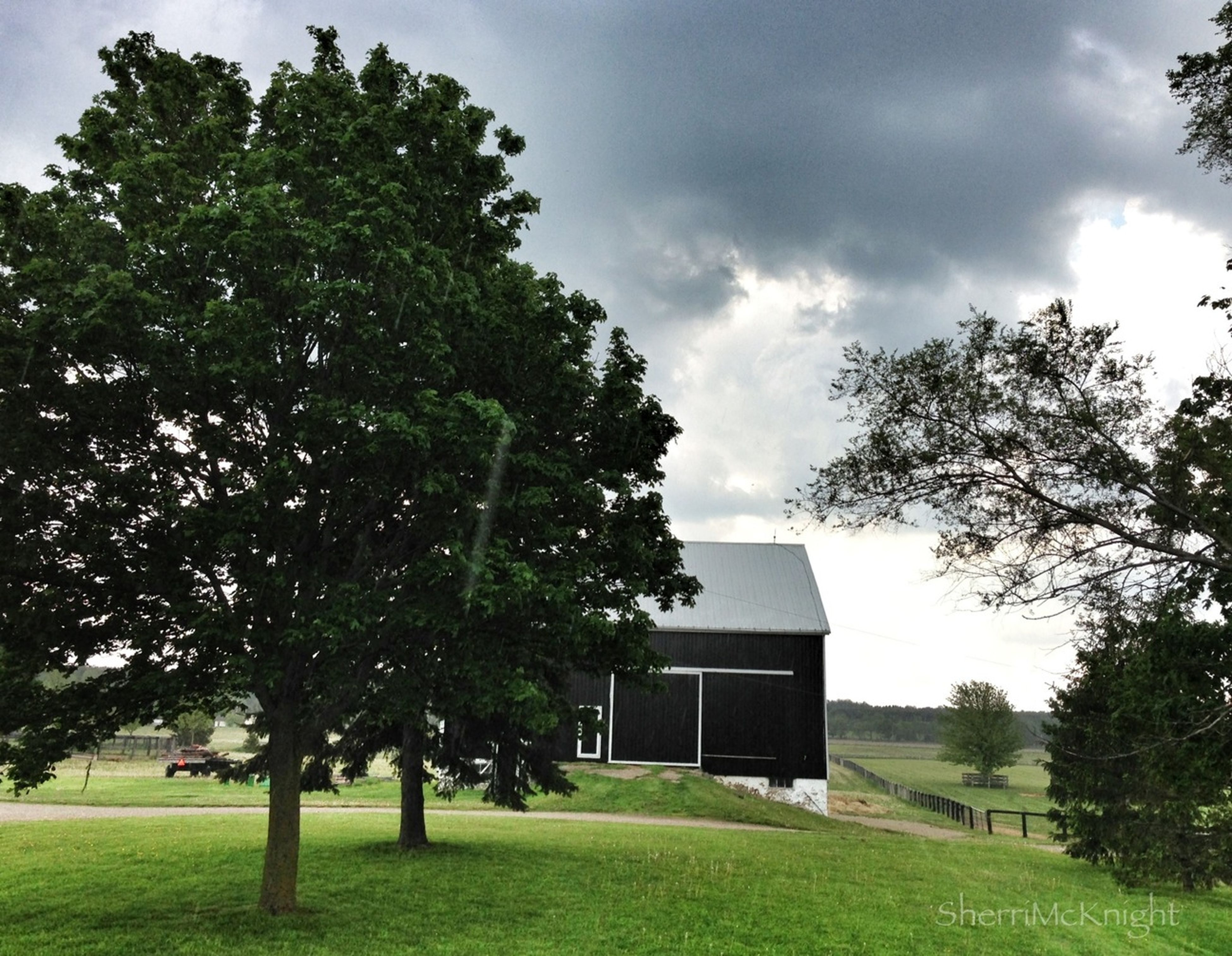 tree, grass, sky, building exterior, architecture, built structure, cloud - sky, green color, lawn, grassy, cloud, growth, field, house, cloudy, nature, park - man made space, tranquility, day, no people
