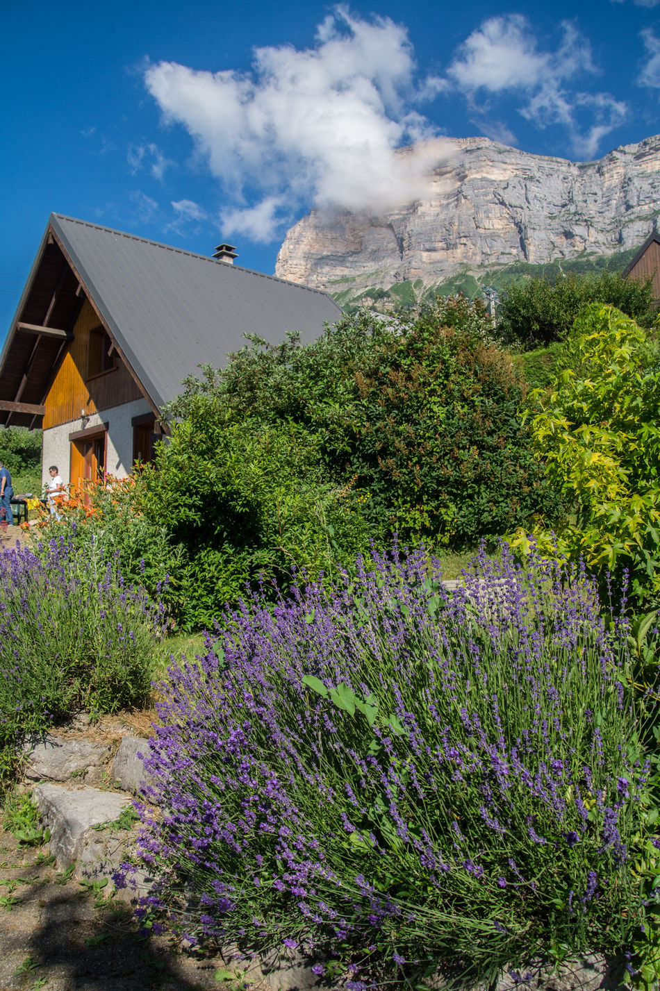 saint hilaire du touvet,isere,france' Alp Alpen Architecture Beauty In Nature Blue Building Exterior Built Structure Chartreuse  Cloud Cloud - Sky Day Footpath Green Color Growing Growth House Houses In Front Of Mountain Mountains Nature No People Outdoors Plant Sky