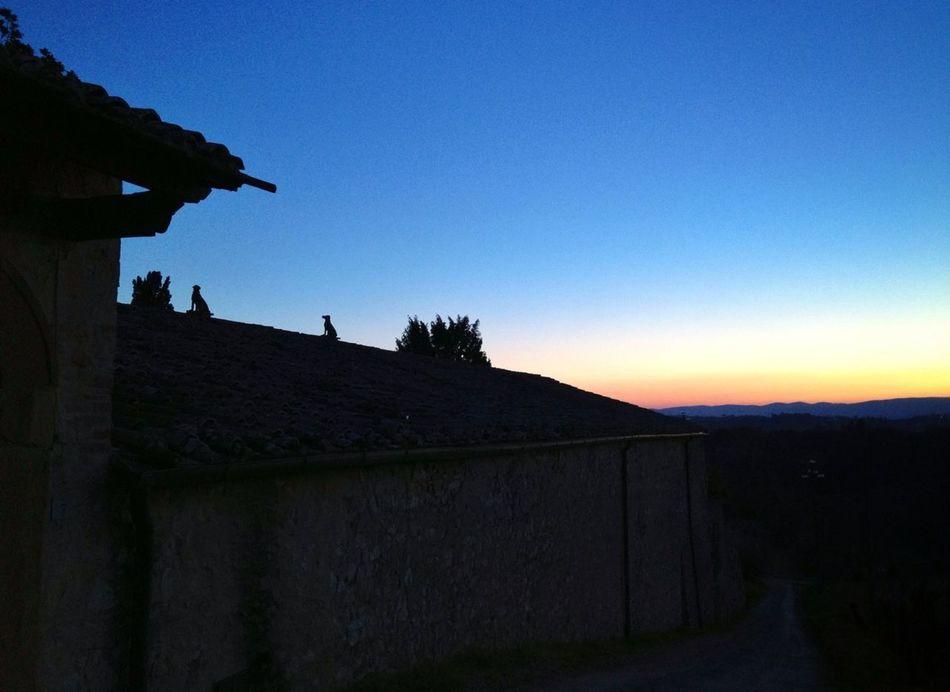 Sunset Spiritual Last Thing I See