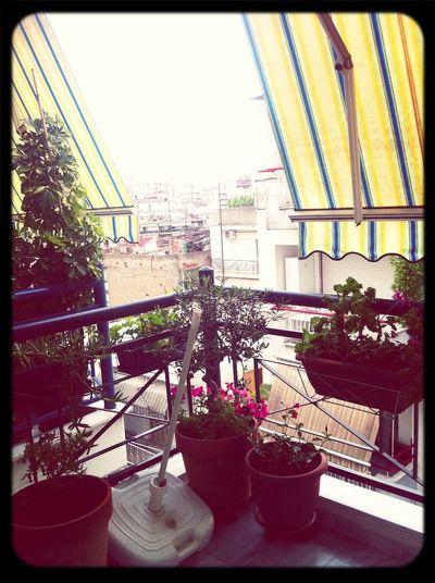 Rain •.•