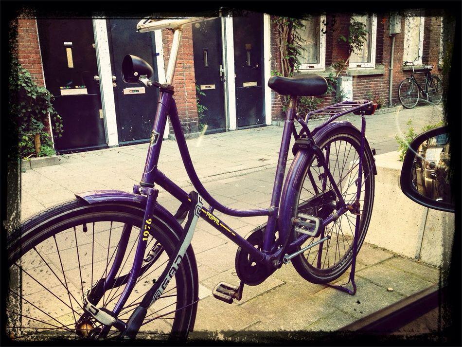 purple wheels