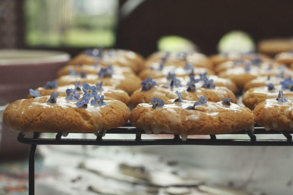Beautiful stock photos of cookies,  Close-Up,  Cookies,  Day,  Dessert