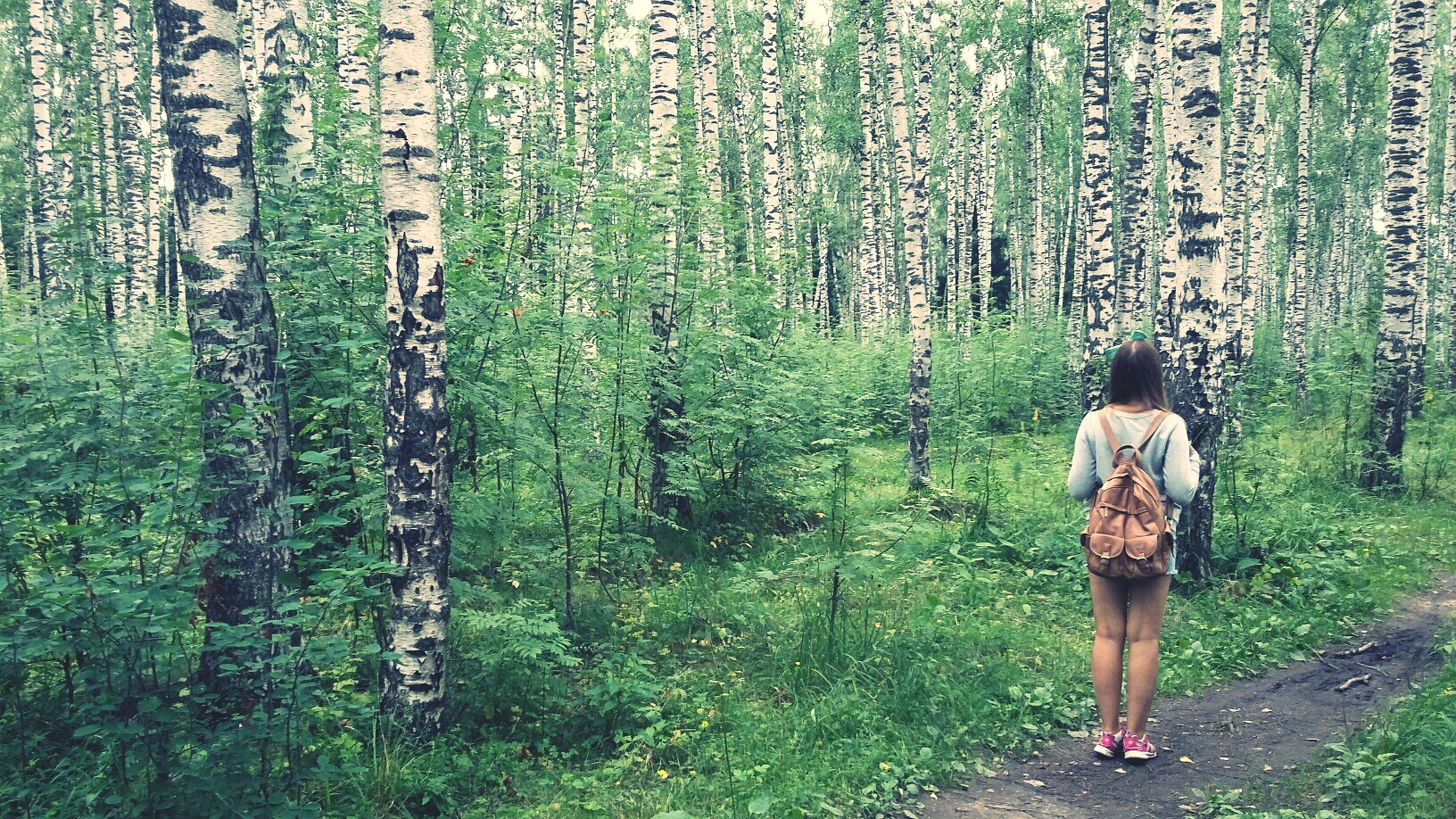 tree, full length, lifestyles, casual clothing, leisure activity, standing, rear view, growth, tree trunk, green color, grass, forest, nature, plant, person, tranquility, day, walking