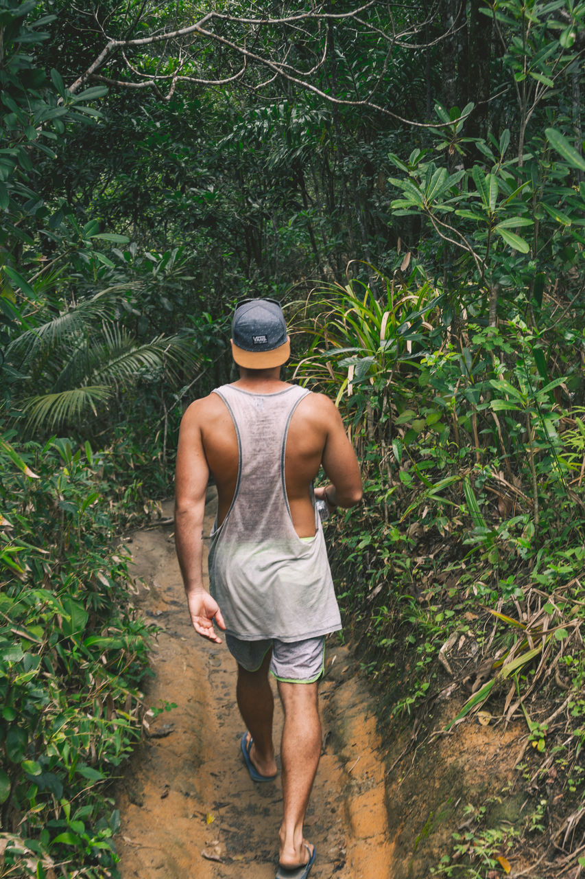 real people, one person, rear view, full length, nature, lifestyles, growth, men, standing, shirtless, outdoors, tree, leisure activity, plant, day, adult, people