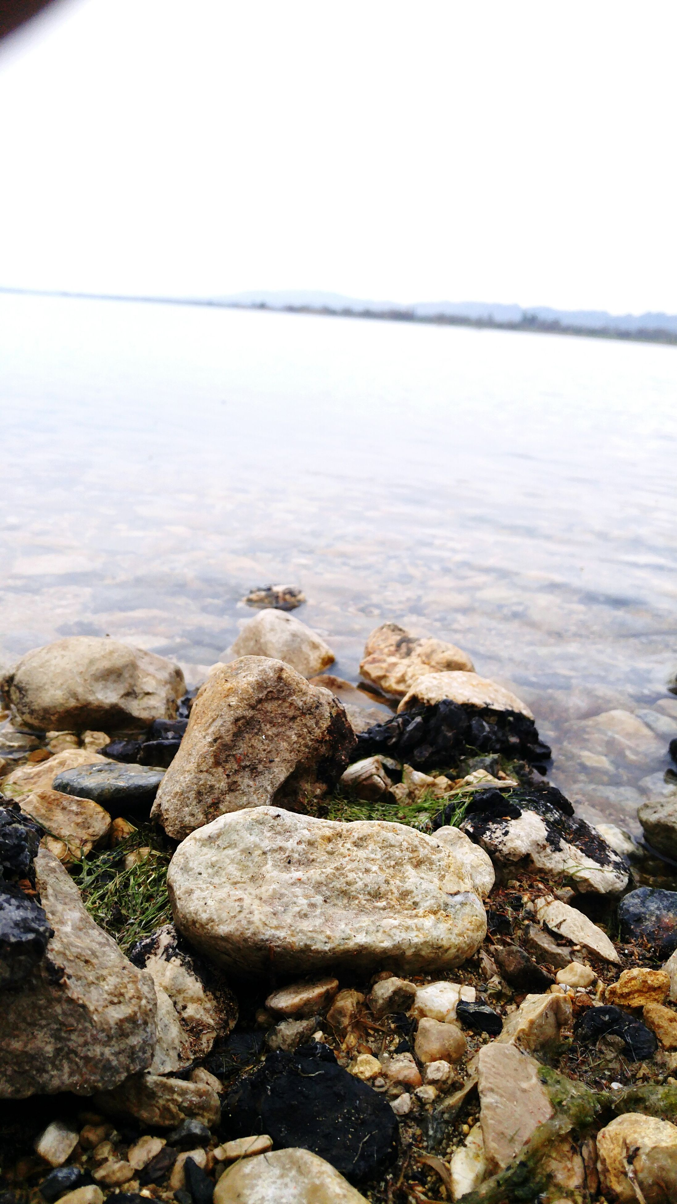 water, rock - object, sea, nature, tranquil scene, tranquility, scenics, outdoors, beauty in nature, no people, day, pebble, beach, close-up, clear sky, sky, pebble beach