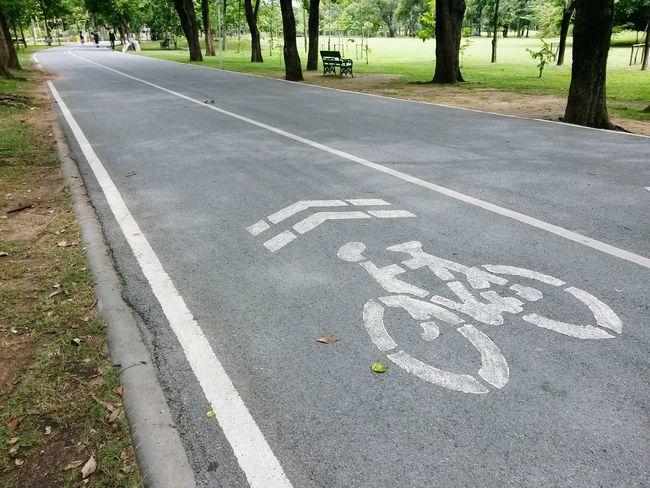 Bike Lane Park Tree Relax Sidewalk Sport