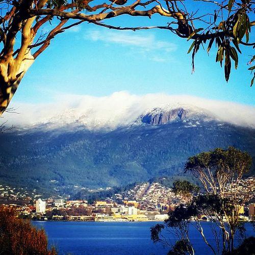 Winter Mountain View Snow ❄ Mt Wellingt9n with it's winter blanket..