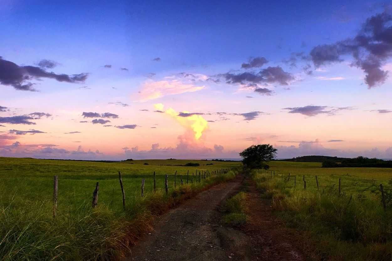 This place remind me of a song... Hello World Taking Photos Enjoying Life IPhoneography Hay Field Beautiful Sunset Sky Puerto Rico The Secret Spaces