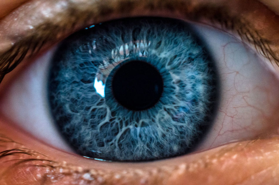 Beautiful stock photos of muster, Blue Eyes, Close-Up, Eyeball, Eyelash