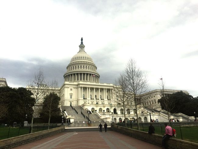 Architecture Dome Built Structure Building Exterior Government Day Travel Destinations Sky Real People Tree Washington, D. C. US Capitol Building Outdoors People