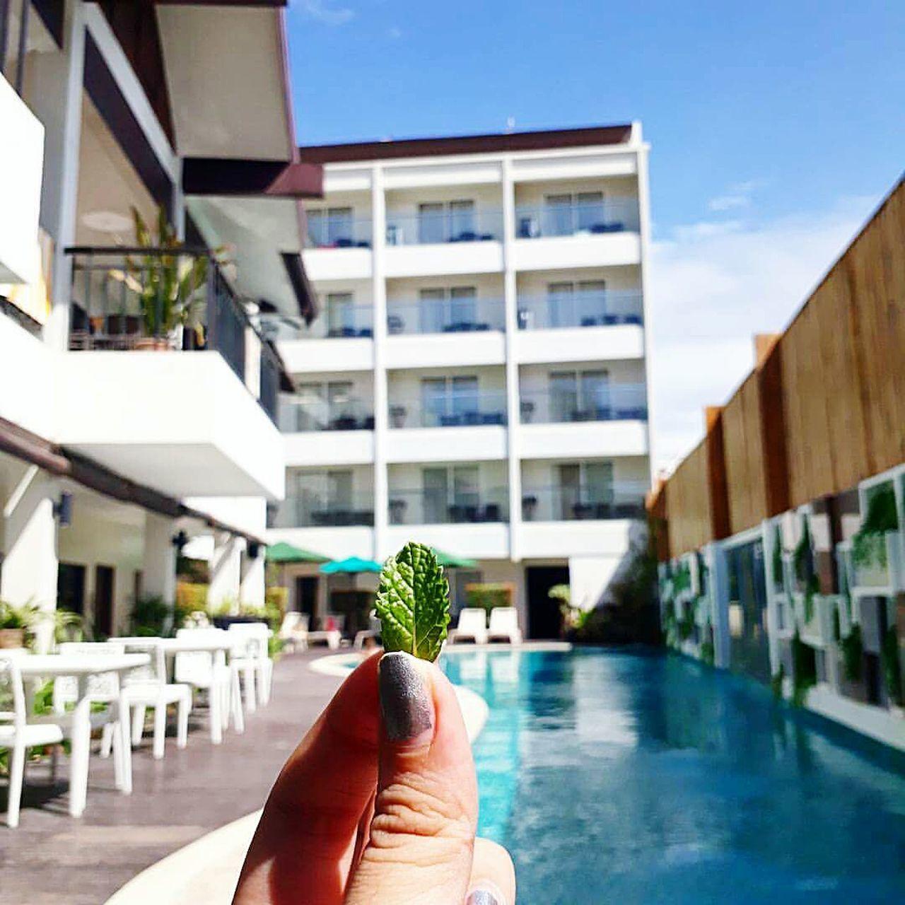 """""""Leafy Friend"""" Adventure Discover  Explore Learn Cherish  Philippines Boracay Leafy Love Live Laugh"""