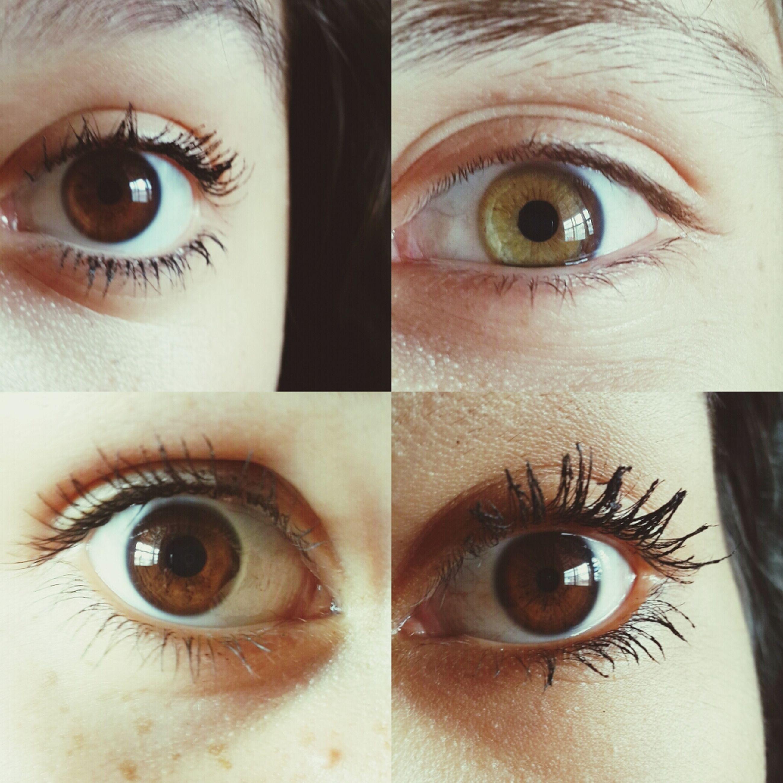 indoors, human eye, full frame, close-up, eyelash, eyesight, backgrounds, extreme close-up, looking at camera, portrait, detail, part of, sensory perception, iris - eye, extreme close up, macro, one person, eye, eyeball