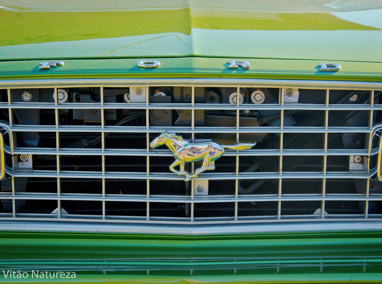 Brasil Photography Nikon Ford Documentary Photography Nikon D7000 Artphoto Fotografia Oldcars Coleção Nikonphotography Antiguidade Carros_antigos_br Carrosantigos Fotografiaéarte Victornatureza Vitaonatureza Olharnatural Fotodocumental Fotografiaautoral Artefotografia Antigomobilismo Mustang