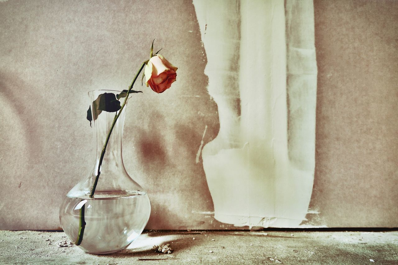 Showcase March Flower EyeEm Gallery Wall How Do We Build The World? Beauty In Nature Nature Lifetime Roses Still Life Building Site Edit Bottle ArtWork Vase SIMPLY Simplicity Simple Beauty Emotions Directly Above No People Things I Like Long Goodbye