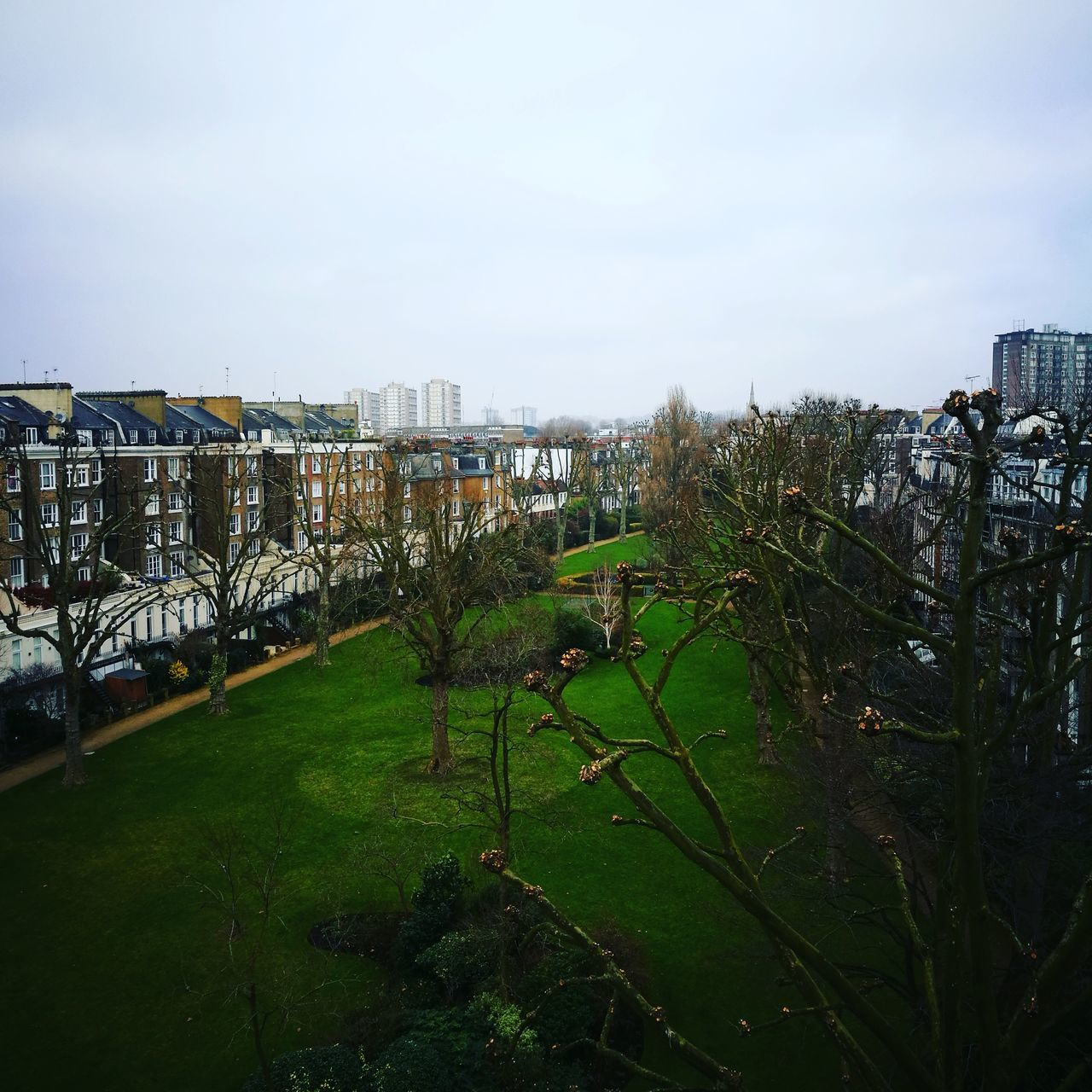 architecture, building exterior, growth, sky, built structure, outdoors, day, grass, no people, green color, city, nature