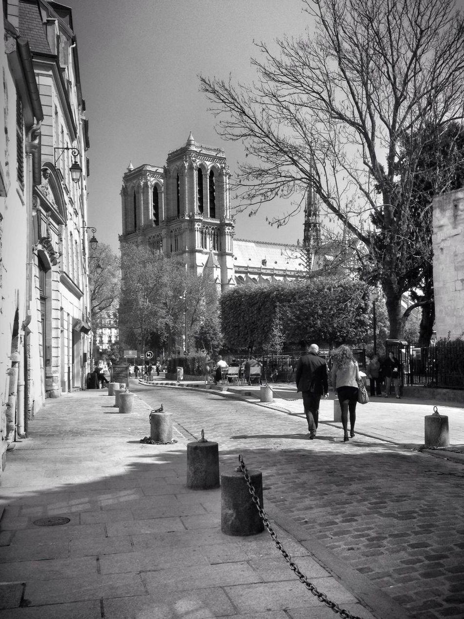 Walk in Paris... Streetphotography Notre Dame De Paris Blackandwhite AMPt - Street