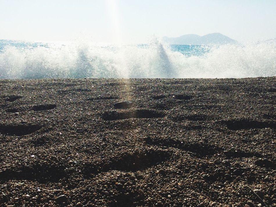 Enjoying The Sun Waves Swimming