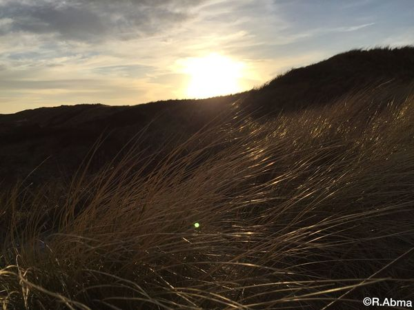 Sunset Sun Sunset_collection Clouds Clouds And Sky Dunes Iphone6