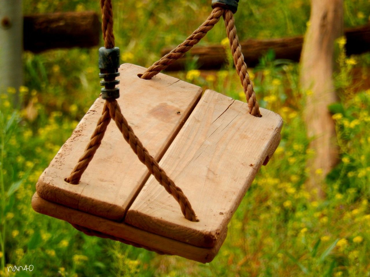 hanging, wood - material, rope, focus on foreground, swing, no people, outdoors, growth, day, close-up, nature