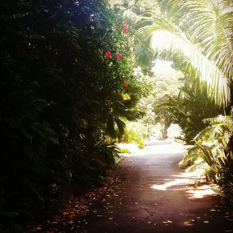 Queens Park Townsville, Queensland.