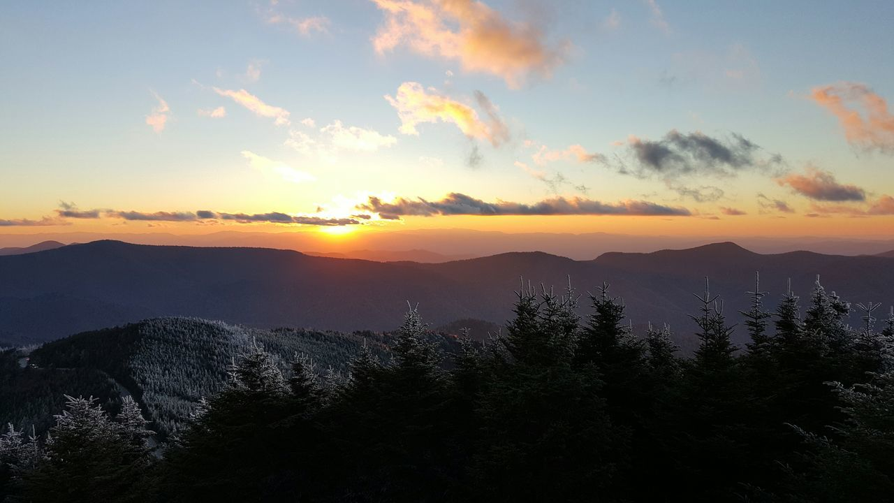 Sunset Environmental Conservation Social Issues Landscape Beauty Nature Horizontal No People Outdoors Mountain Science Water Tree Beauty In Nature Sky Day Blue Ridge Mountains Frost Rime Ice Spruce Trees Spruce Pine at Mount Mitchell