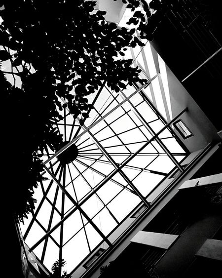 Black . . Blackandwhite Bethlehem Friends Picoftheday Followforfollow Low Angle View No People Tree Sky Built Structure Outdoors Architecture Day