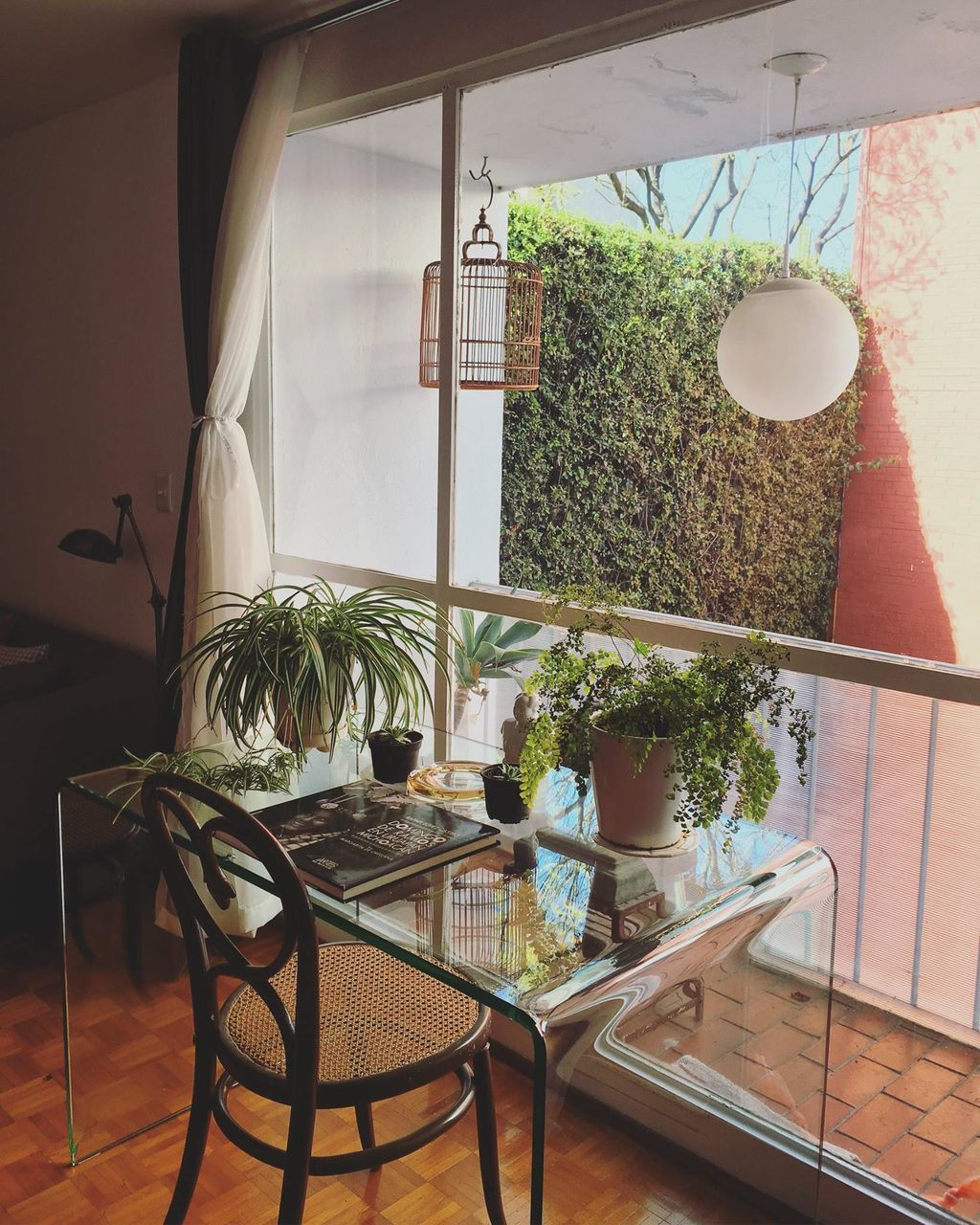 indoors, table, chair, home interior, no people, plant, home showcase interior, day, nature