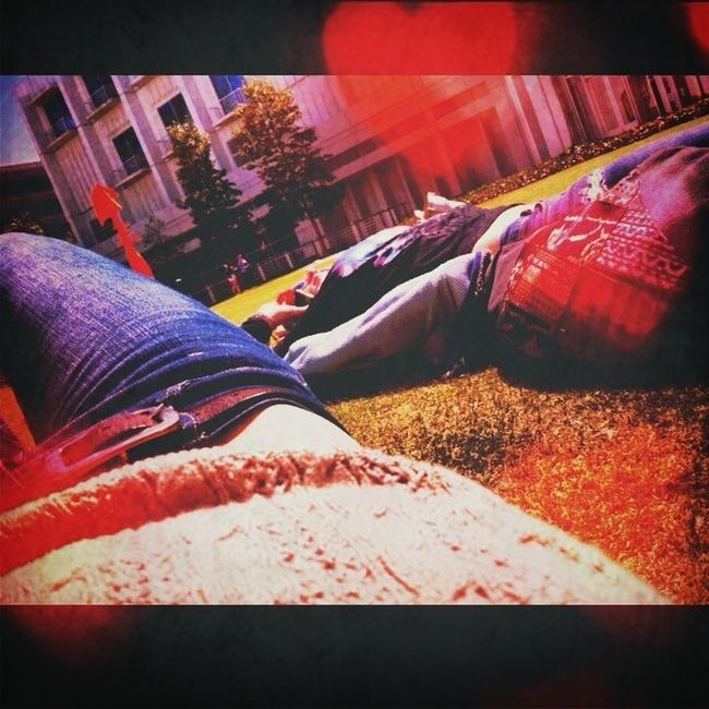 Sleeping In Sunlight