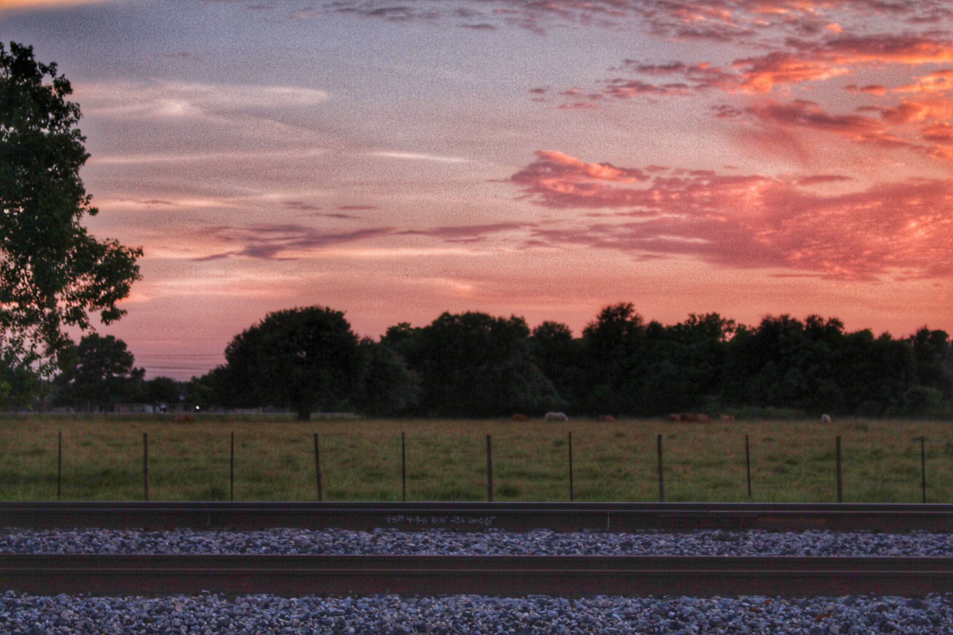 tree, landscape, sky, transportation, field, tranquil scene, tranquility, road, scenics, railroad track, nature, sunset, beauty in nature, cloud - sky, rural scene, growth, rail transportation, no people, outdoors, country road