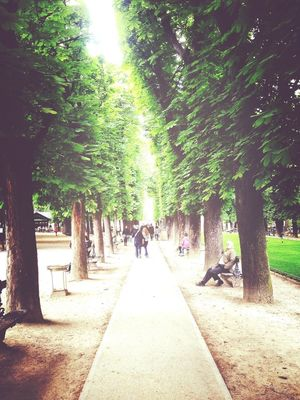 eye4nature at Jardin du Luxembourg by Steph