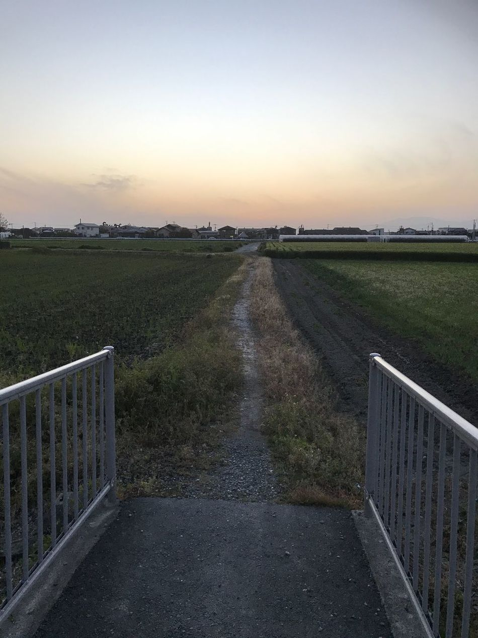 こんな道が好き🤣 Sunset The Way Forward No People Landscape Railing Tranquil Scene Nature Outdoors Field Sky Scenics Beauty In Nature Tranquility Grass Rural Scene Clear Sky Day Iphone7 Happy Wish Japan EyeEm Best Shots EyeEm Gallery Fukuoka,Japan Nature