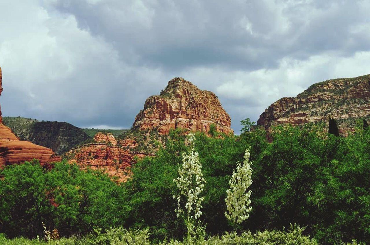 Travel Photography Arizona Landscape