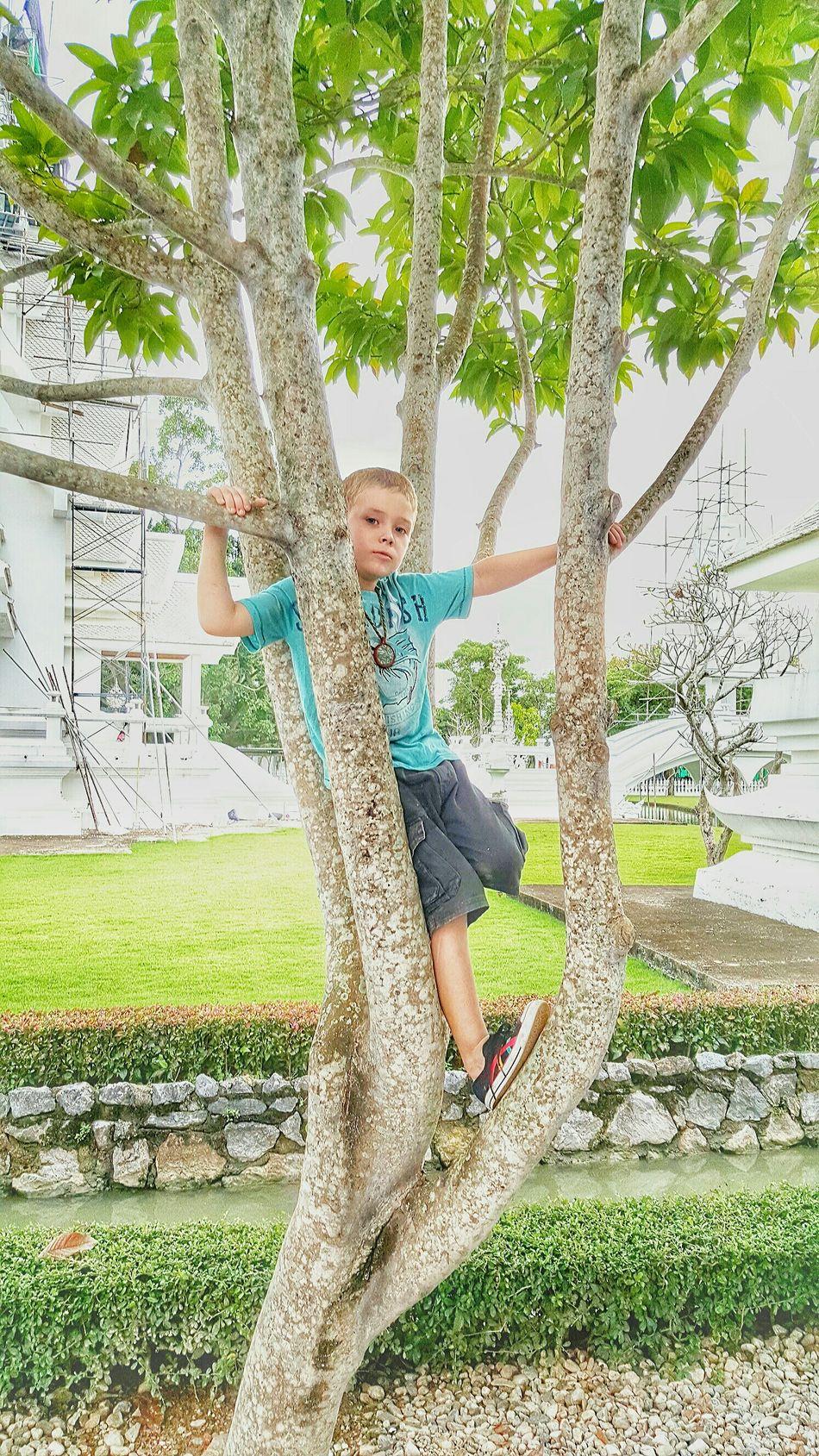 Hyperactive Boy At @chiangrai GoodTimes