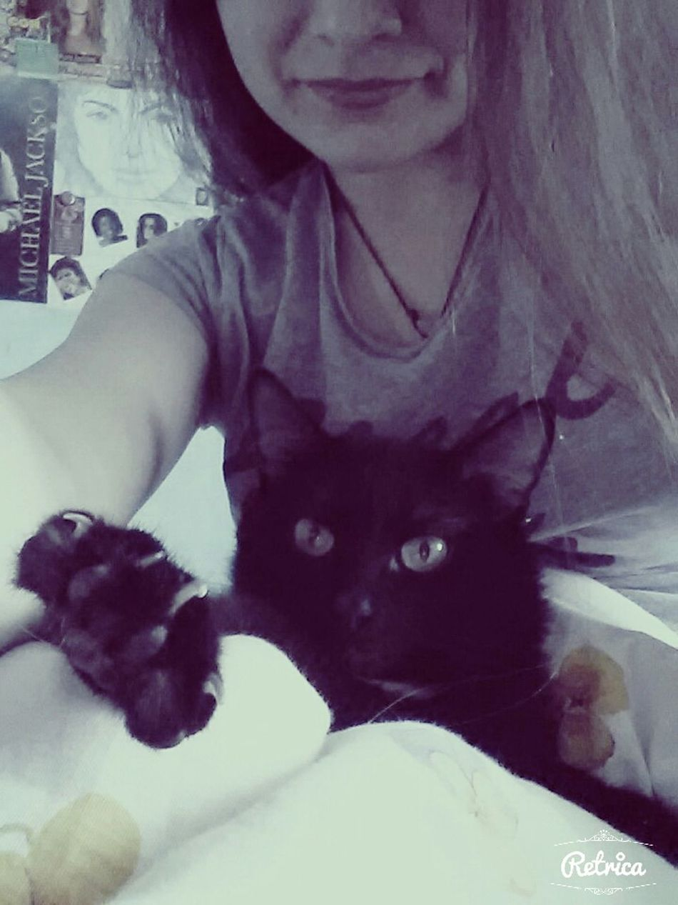 Relaxing Love My Cat♡