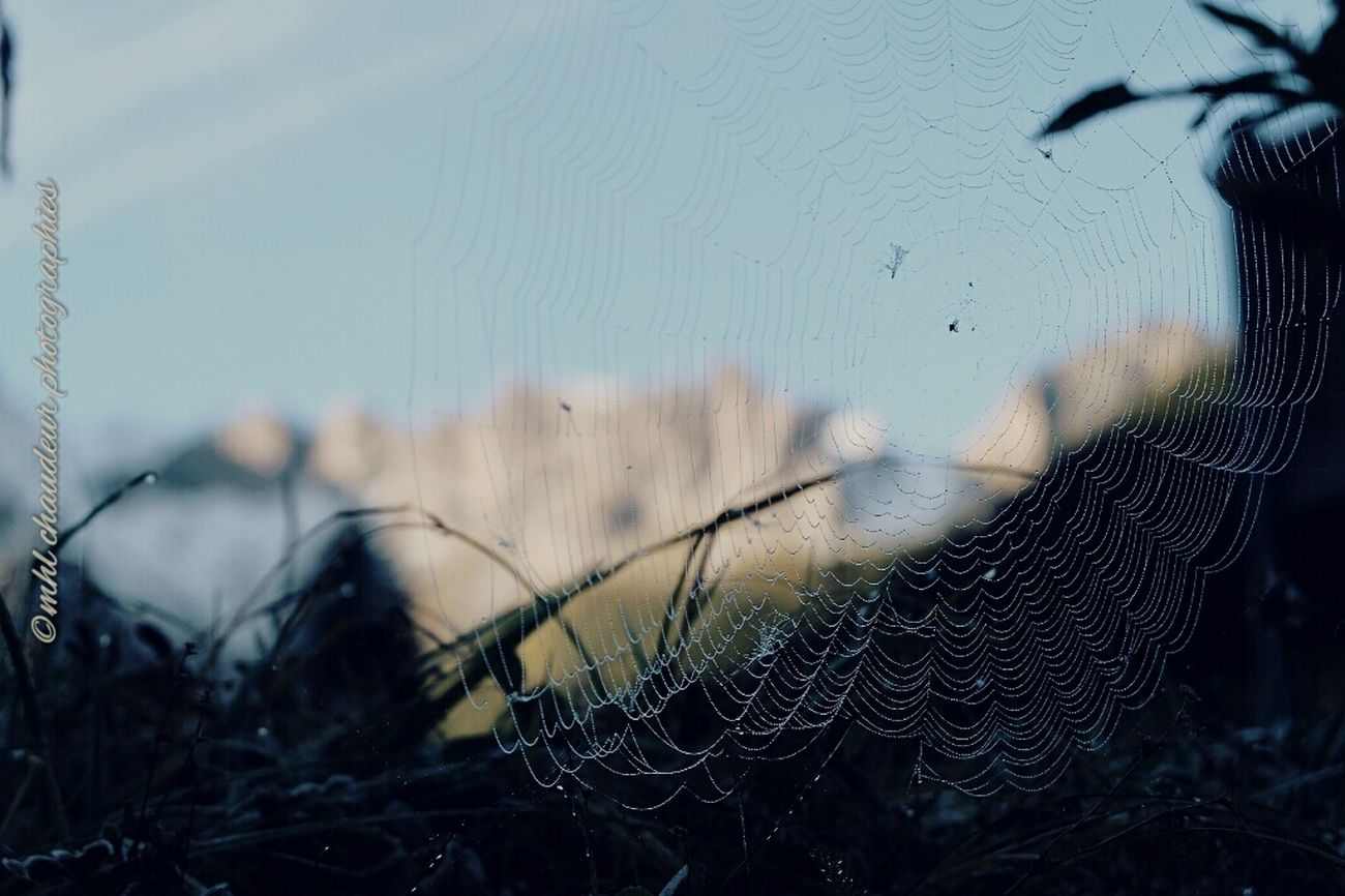 Morning shoot on montain camping Spiderman Spiderlandscape Spider Morning Mountain Landscape Mhlchaudeurphotographies
