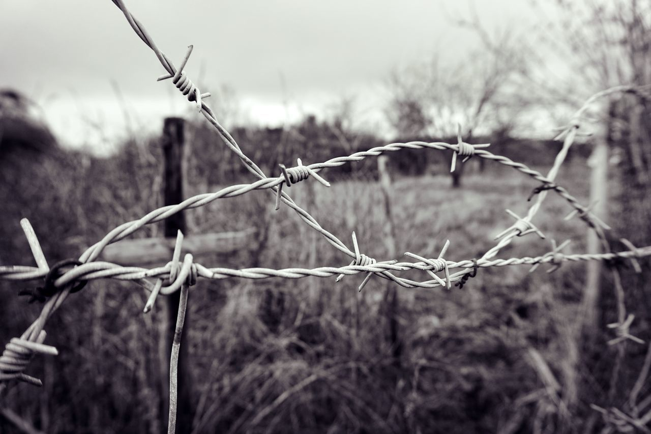 Barbed Wire Barbed Wire Beauty In Nature Chainlink Fence Close-up Day Detail Fence Field Focus On Foreground Grass Growth Landscape Nature No People Outdoors Plant Safety Scenics Security Selective Focus Sky Monochrome Photography Tranquility First Eyeem Photo TakeoverContrast