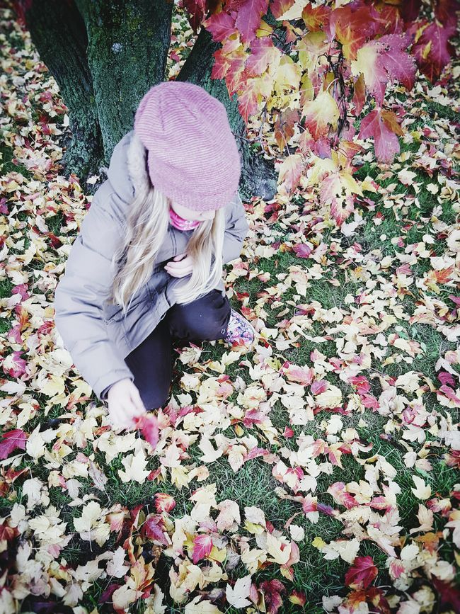 Autumn Autumn Colors Autumn Leaves Autumn Colours Child Children Playing People And Places Playing Outside Little Girl Leaf Fragility High Angle View Autumn Change Freshness Beauty In Nature Nature Pink Color Outdoors Leaves Tranquility Colors And Patterns Dramatic Angles