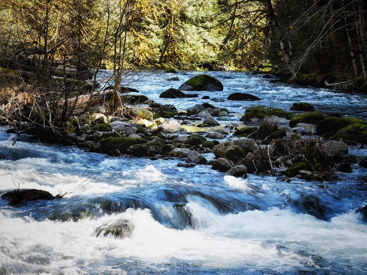 Water Nature Beauty In Nature Tranquil Scene Forest No People River Outdoors Tree Moss Scenics Tranquility Landscape Day Waterfall Sky Riverside Forest Photography Exploration Adventure Nature_collection Nature Photography Tranquility Tree Beauty In Nature