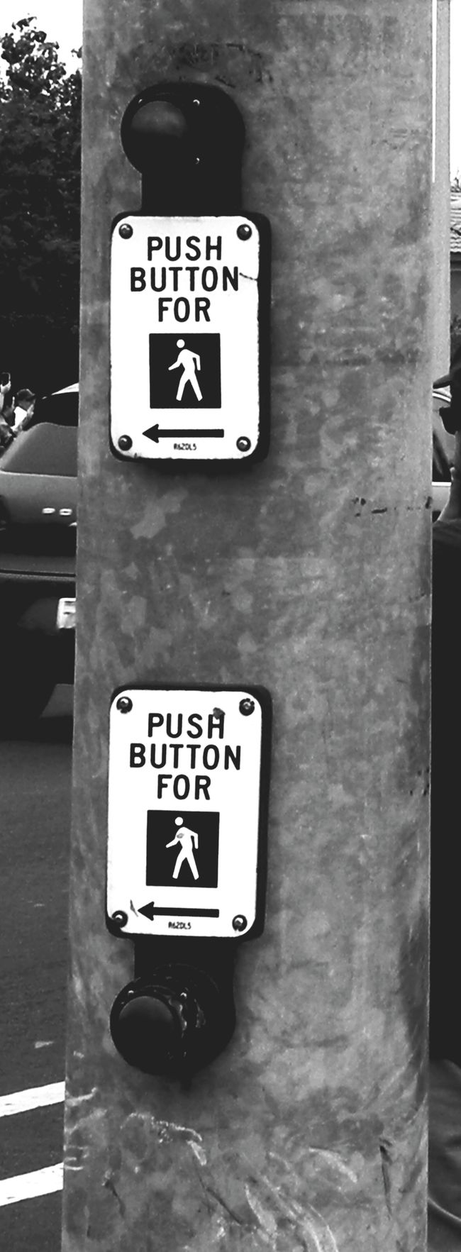 Two Is Better Than One Taking Photos Riverside California Black And White Photography Black And White Outdoors Crosswalk Sign Eyemphoto Monochrome Monochrome Photography