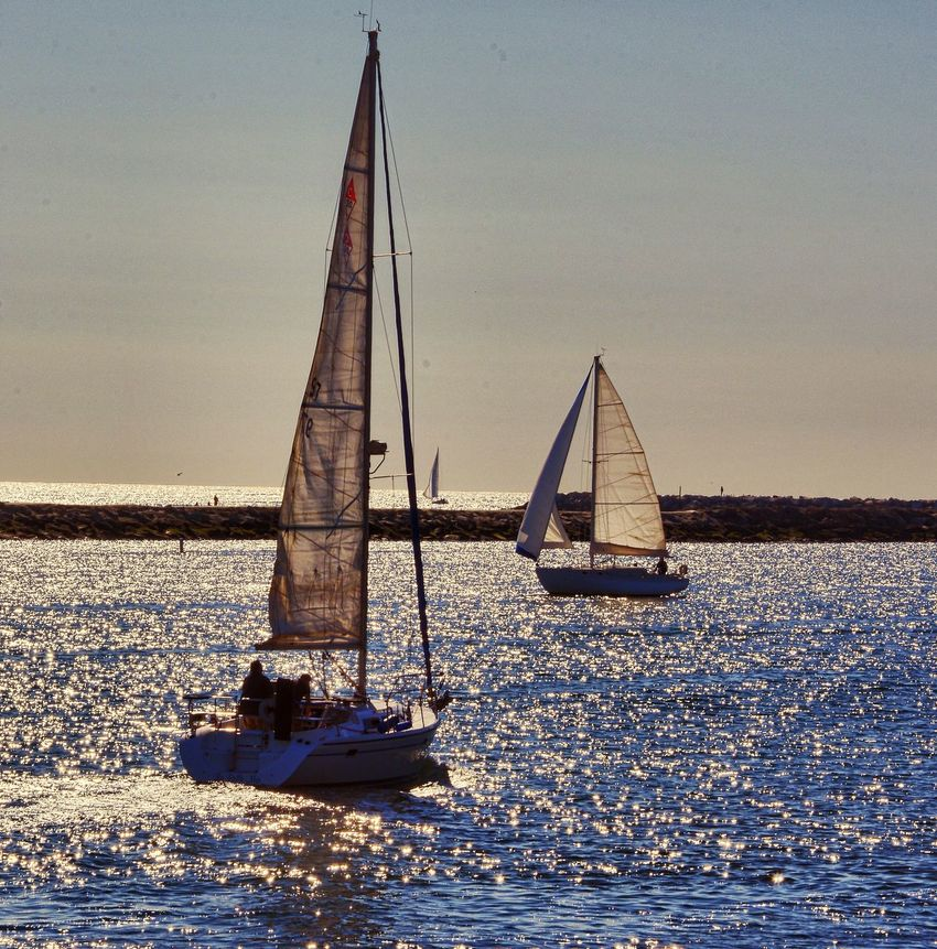 Sailing Sailboat Sailboats Sunshine & Sailboats Marina Del Rey Ocean Eye4photography