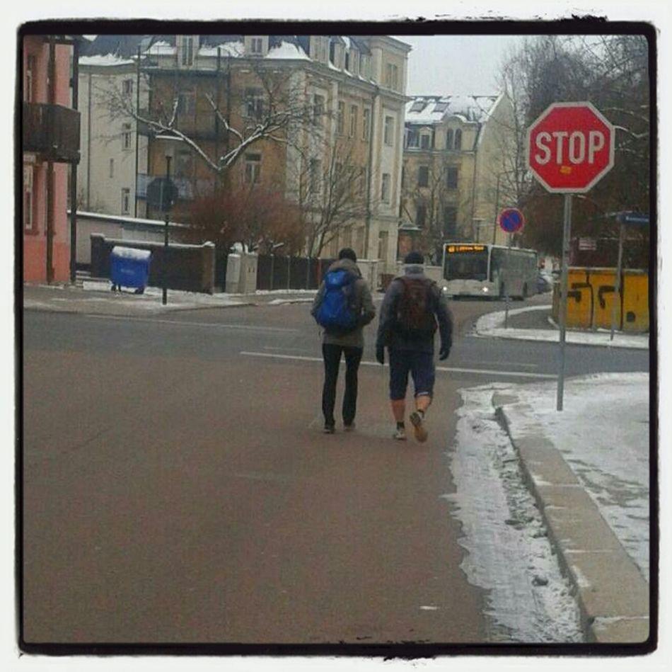 Winterfrische in Dresden MohornerStrasse 01159