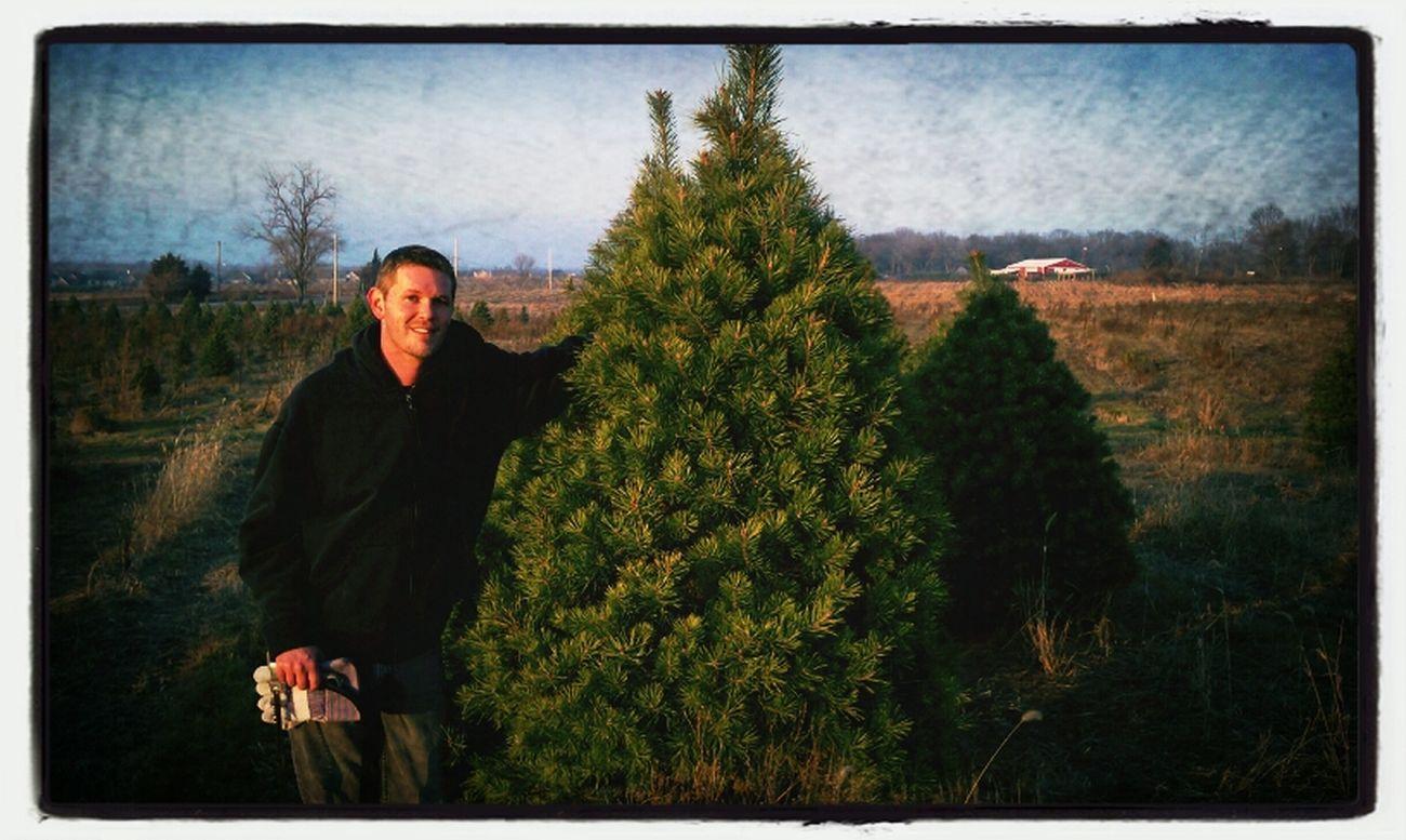 Christmas tree found