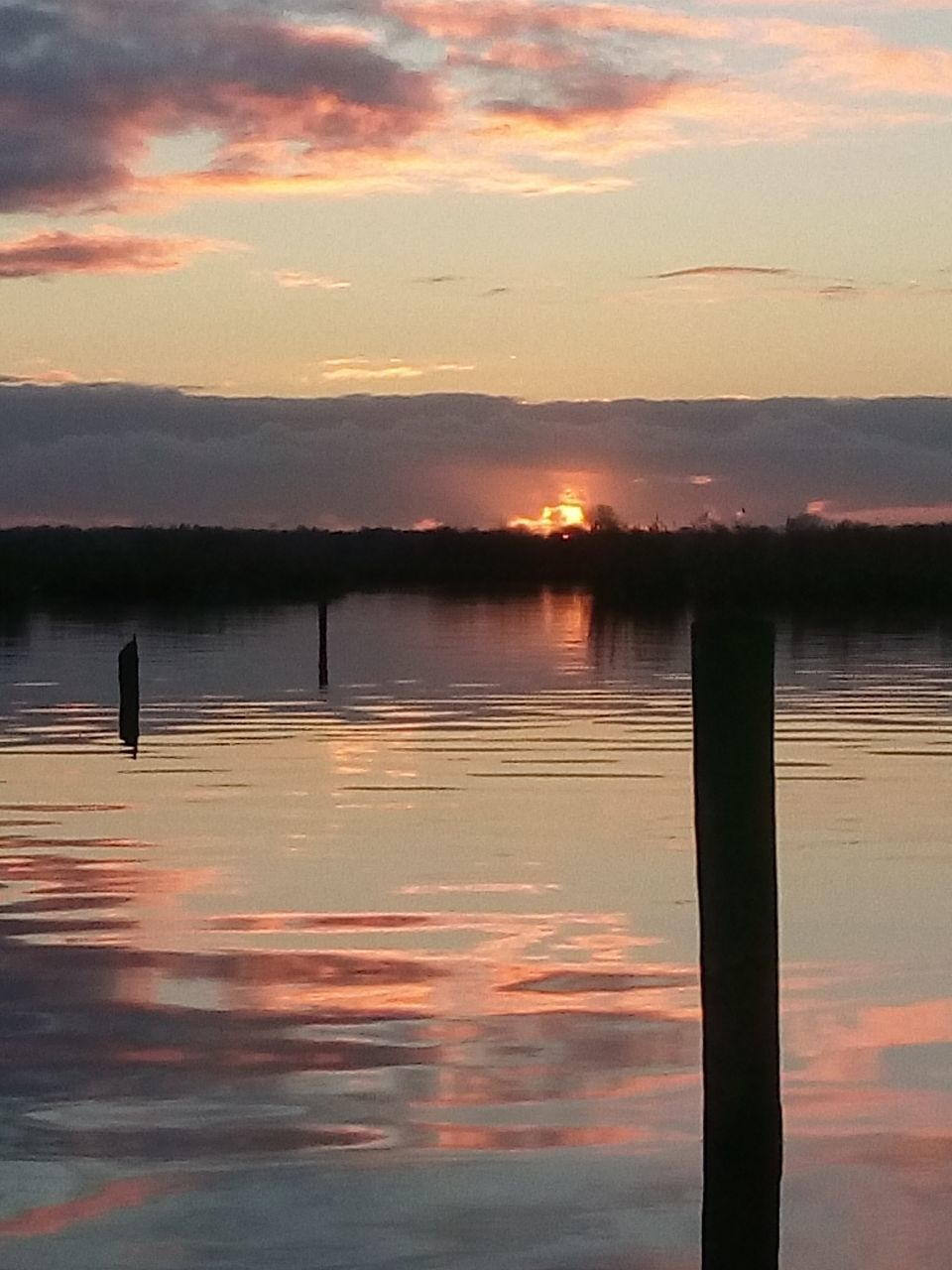 sunset, water, lake, nature, reflection, beauty in nature, scenics, silhouette, tranquility, tranquil scene, animals in the wild, bird, no people, sky, animal themes, waterfront, outdoors, wooden post, cloud - sky, animal wildlife, one animal, swimming, day