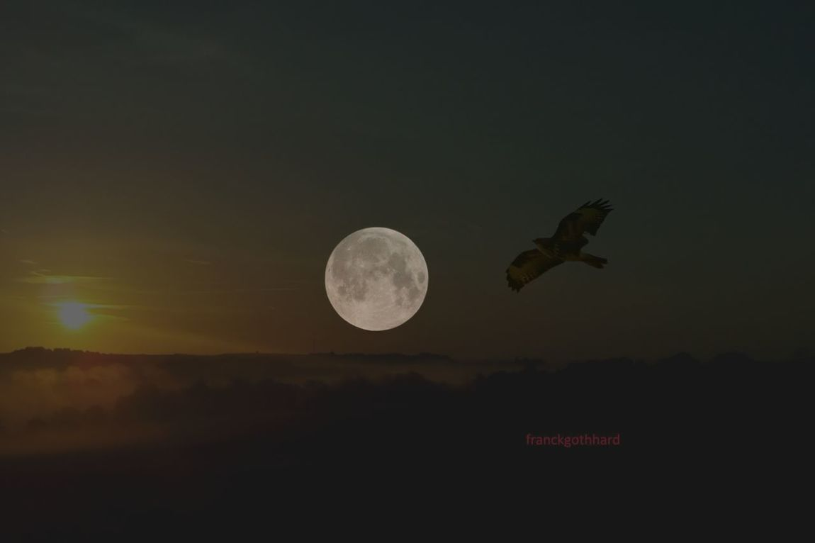 Collage Photography Lune Soleil