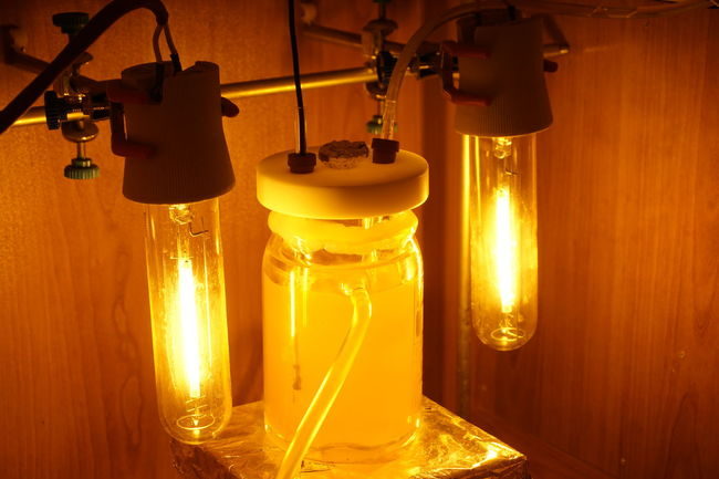 Photoreactor Reaction under high concentration light source. Illuminated Science Chemistry Sony A6000 Orange Color Glowing Light Source Engineering EngineeringStudent University