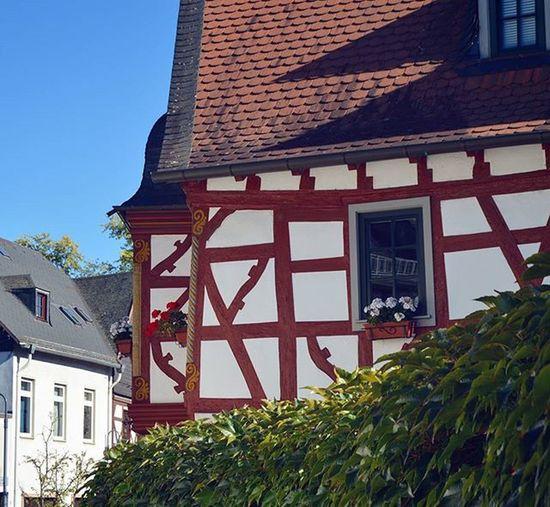 Фахверковые домики 🏡 Erbach Rhein Rheinlandpfalz Eltvilleamrhein Eltville Rheingau Deutschland Germany Europe